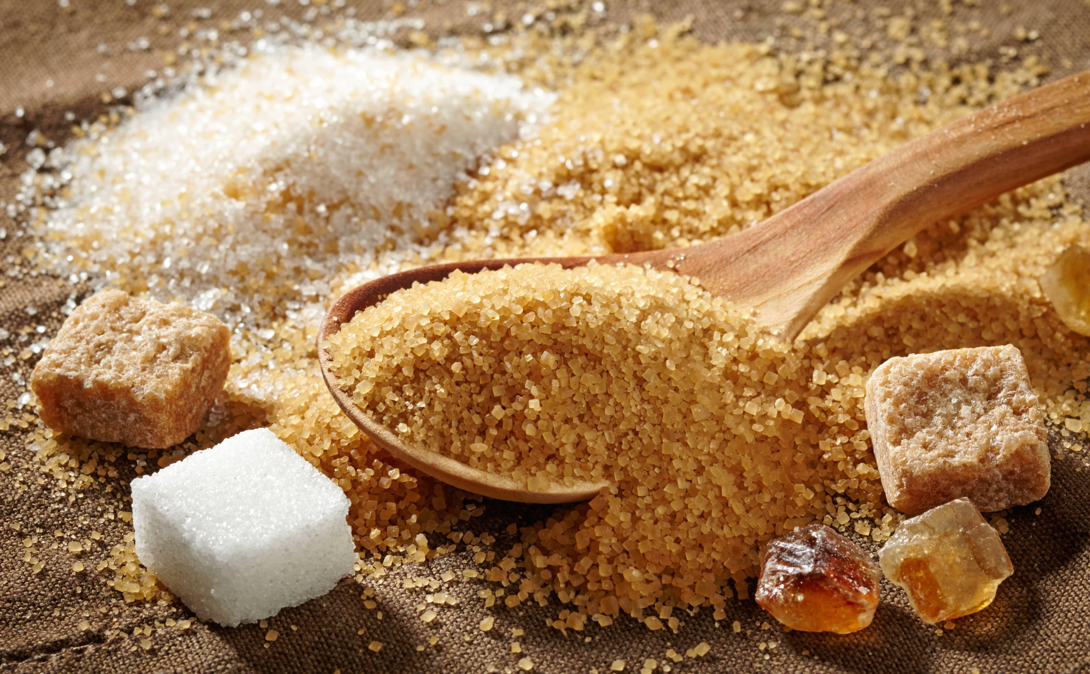 Suikervrij eten – De nieuwste trend